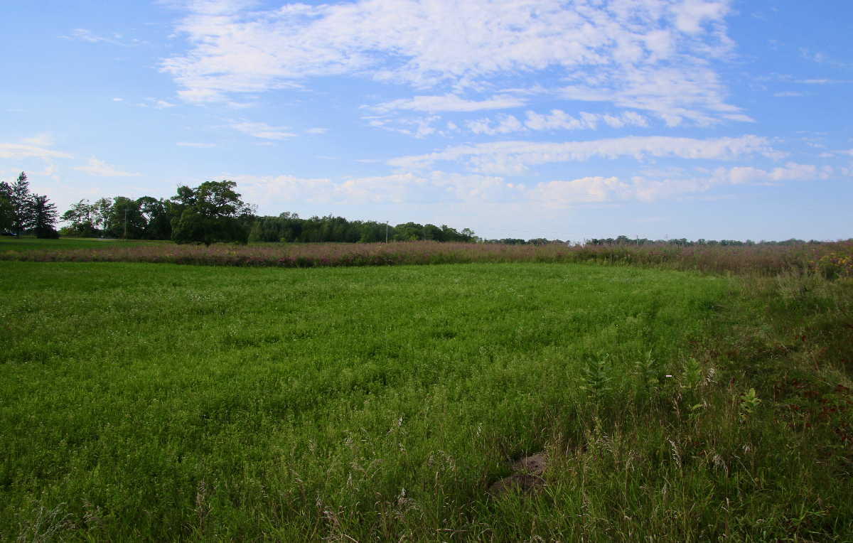 MN resorts for sale Kimp's Kamp additional acres with sale
