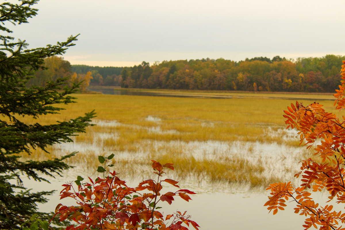 fishing resort for sale MN Four Seasons