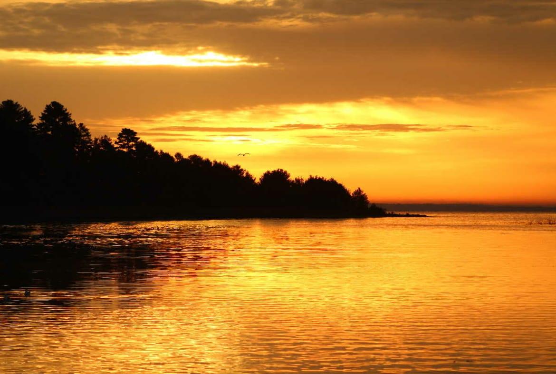 Leech Lake resorts for sale