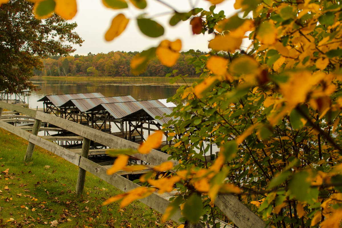 Four Seasons northern MN resort for sale